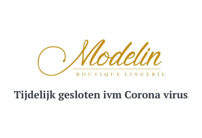 modelin corona virus